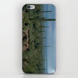Arizona Desert and Cactuses iPhone Skin