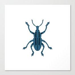 Folk Weevil Canvas Print
