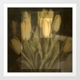 The One Tulip Art Print