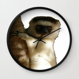Madagascar Sifaka  Wall Clock