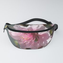 Close Up of Peach Tree Blossom Fanny Pack