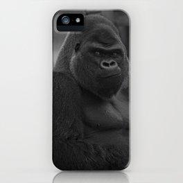 Oumbi The Silverback Gorilla iPhone Case