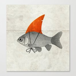 Goldfish with a Shark Fin Canvas Print