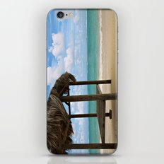 Caribbean Breeze iPhone & iPod Skin