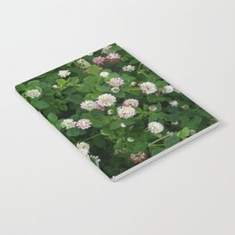 Clover flowers green and white floral field Notebook