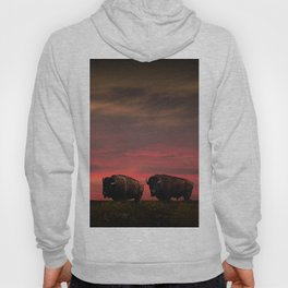 Two American Buffalo Bison at Sunset Hoody