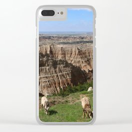 Bighorn Sheep At Sage Creek Clear iPhone Case