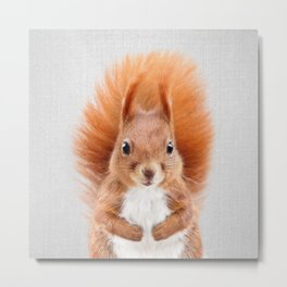 Squirrel 2 - Colorful Metal Print