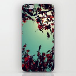 Autumn's Delight iPhone Skin