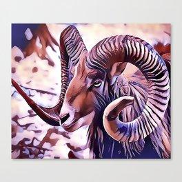 The Bighorn sheep Canvas Print