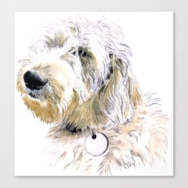 Labradoodle Butters Canvas Print