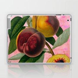 Vintage Botanical Collage, Bradford Peach Laptop & iPad Skin