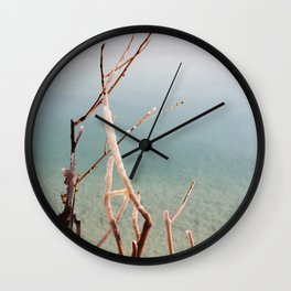 Salt covered branch on dead sea Wall Clock