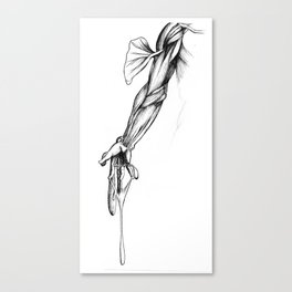 De Humani Corporis Fabrica - Arm Canvas Print