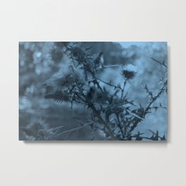photography of wild plants of the field with manipulation in blue color perfect for illustrations Metal Print