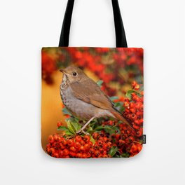 Hermit Thrush on the Scarlet Firethorn Tote Bag