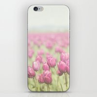 tulip iPhone & iPod Skins featuring Tulip by Pure Nature Photos