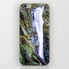 The Lines Found in Nature iPhone & iPod Skin