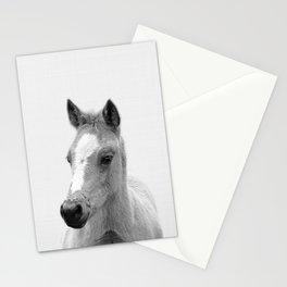 Baby Horse, Farm Animal Print Stationery Cards
