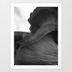 mushroom gills II Art Print