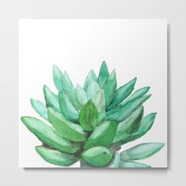 succulent echeveria Metal Print