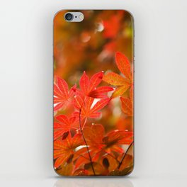 Acer leaves iPhone Skin