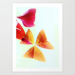 Red Butterfly Wing Leaves Art Print