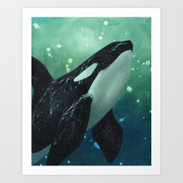 Orcinus Art Print