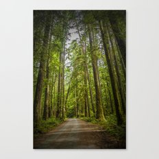 Rain Forest Dirt Road on Vancouver Island in British Columbia Canada No.1179 A Fine Art Wilderness L Canvas Print