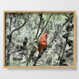 Cardinal in Crab Apple Serving Tray