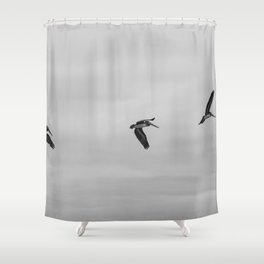 Pelican Flight Study Shower Curtain