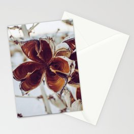 White Orange Flower Stationery Cards