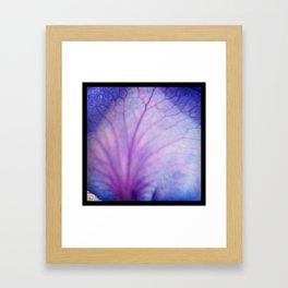 Violet Veins Framed Art Print