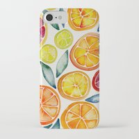 kitchen iPhone & iPod Cases featuring Sliced Citrus Watercolor by Cat Coquillette