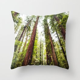 humboldt redwood forest Throw Pillow