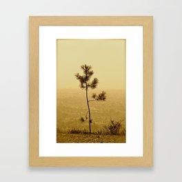If I Were A Tree... Framed Art Print