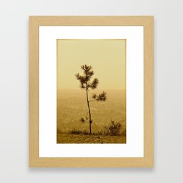 If I Were A Tree... Framed Art Print