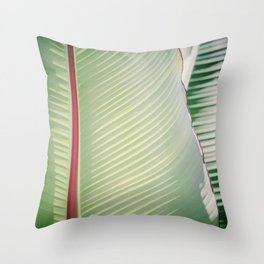 Sage + Red Throw Pillow