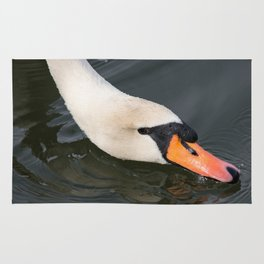 Mute Swan in Winter - Neck Skimming Rug