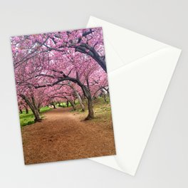 Blossoms in Bloom Stationery Cards