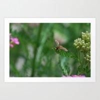 Tiny Bee Art Print