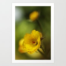 yellow. Art Print