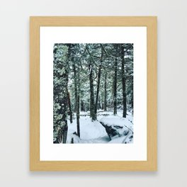 Spring Snow Framed Art Print
