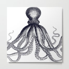 Octopus | Black and White Metal Print