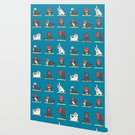 Yorkshire Terrier Yoga Wallpaper
