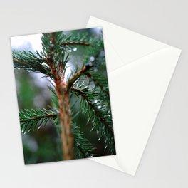Rain covered Conifer Stationery Cards