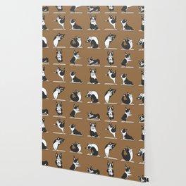 Boston Terriers Yoga Wallpaper