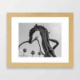 UnTangled Framed Art Print