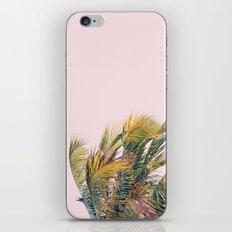 Like A Hurricane iPhone & iPod Skin