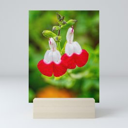 Hot Lips Flower Mini Art Print
